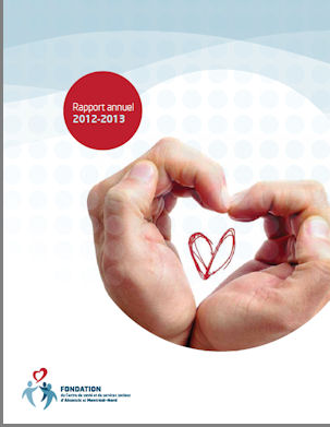 rapport annuel 2012 2013